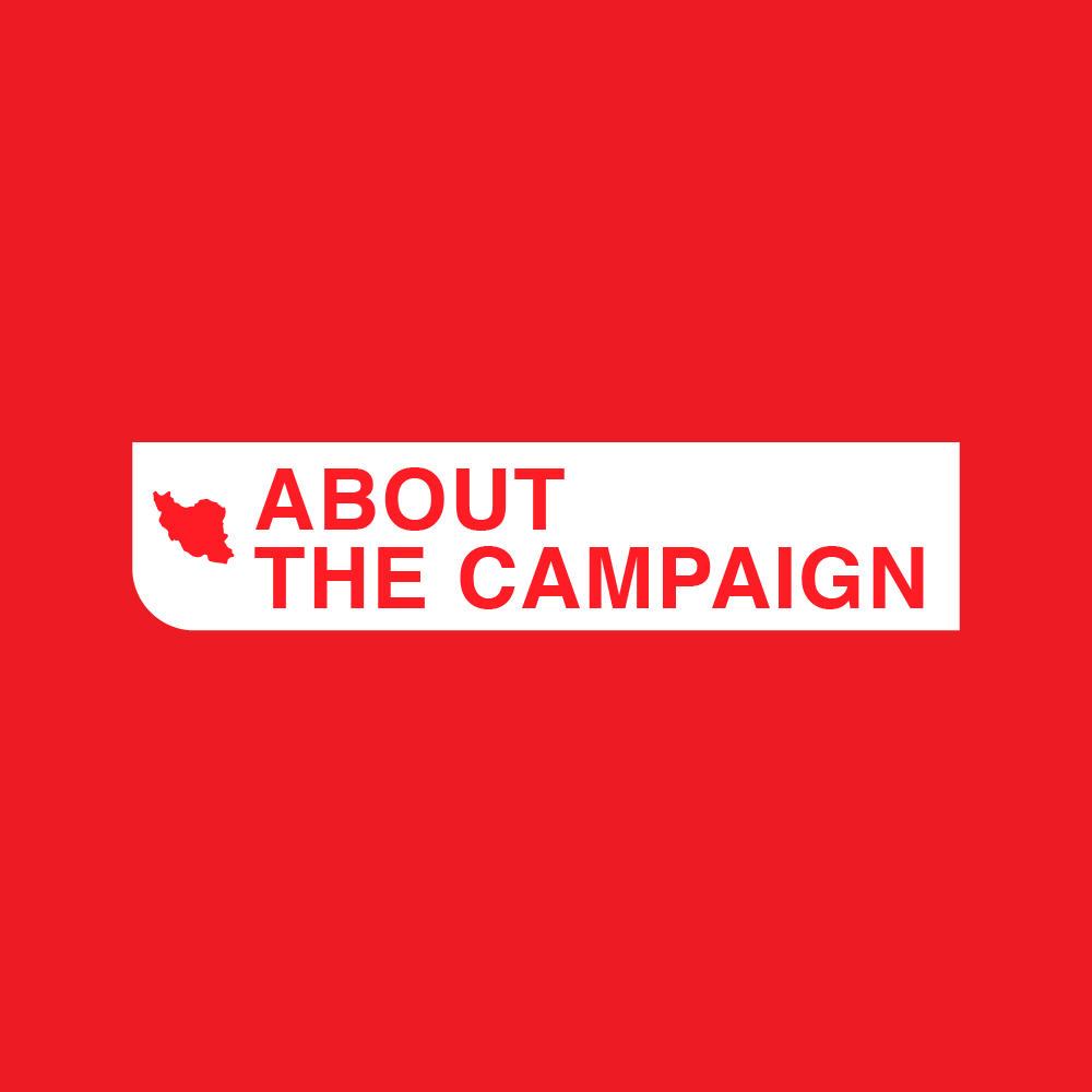 about-the-campaign-roll